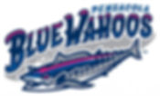 Blue-Wahoos-Large.jpg