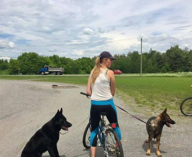 AD (endurance test)DOG BOARDING