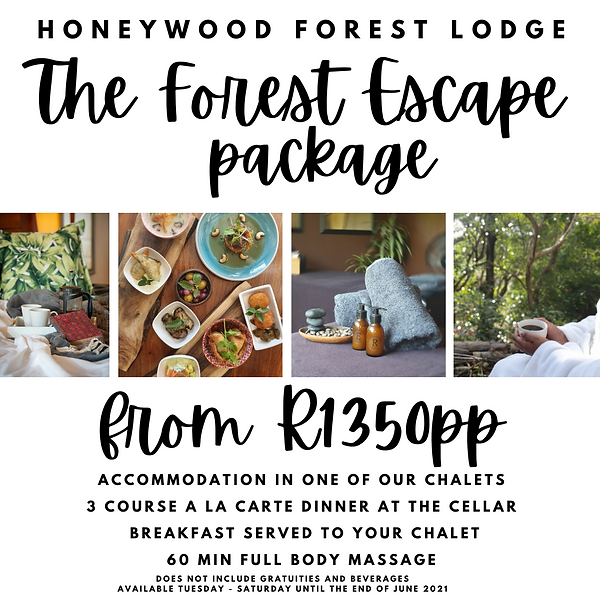 The Forest Escape package 2021.png