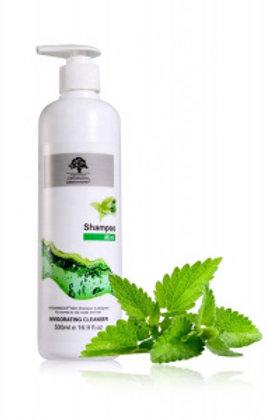 Fresh Mint Shampoo