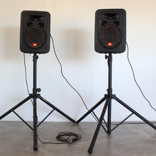 Speakers & Microphone stands set