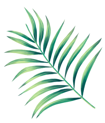 leaves-foliage-4.png
