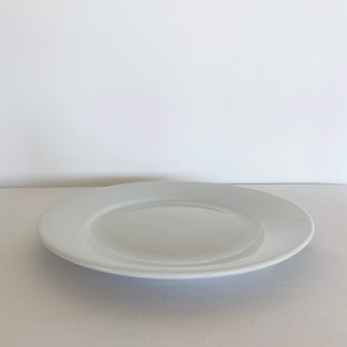 Mains Plate