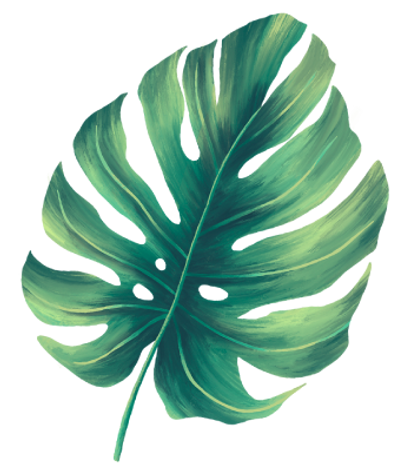 leaves-foliage-2.png