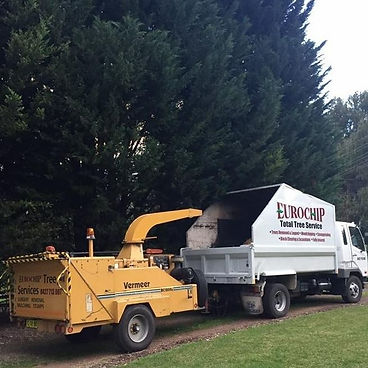 Tree removal,Wood Chipping, onsite,block clearing,stump grinding,Garden Mulch,Hedge pruning,shaping,