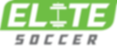 Soccer Logo (gray).png