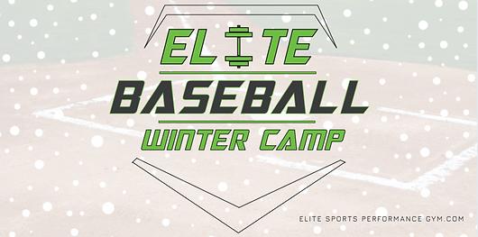 Elite Baseball Winter Camp