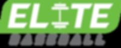 Baseball Logo (gray).png