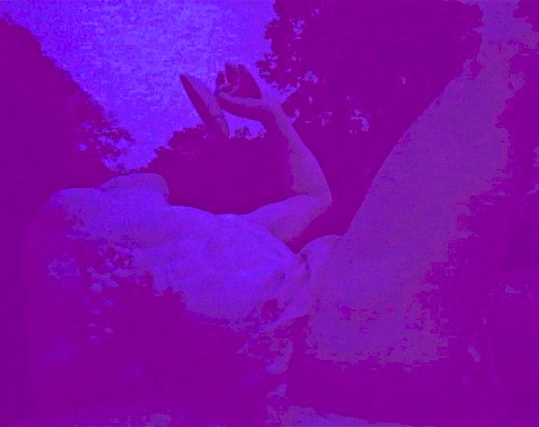 Purple Here and Now