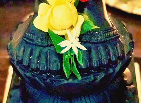 Guru Pūrṇimā グル・プルニマ