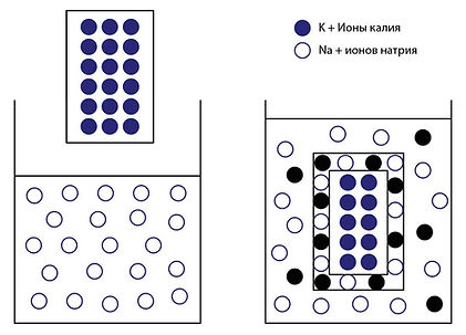 Технология химической закалки стекла.jpg