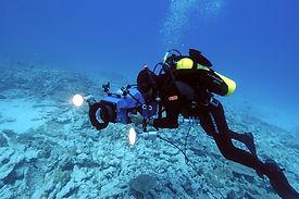 National-Ocean-Service-Image-Gallery.jpg
