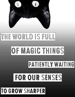 Magie van het allerdaagse