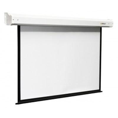 Экран настенно-потолочный