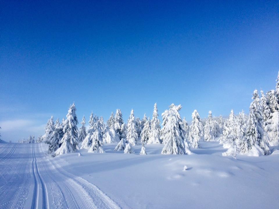 Лыжня на горнолыжном курорте Хафьель