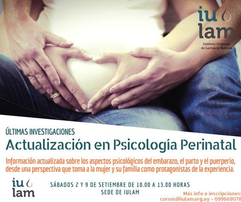 Actualización en Psicología Perinatal
