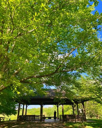 Cherokee Park