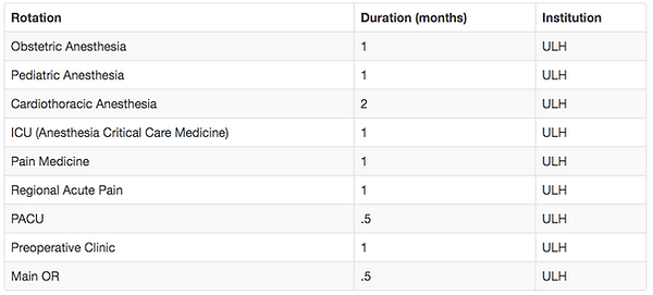 Table outlining the of number of months per rotation for CA3 year