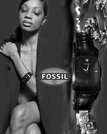 Fossil%2Bsonia%2Bad_edited.jpg