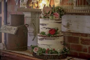Semi Naked Cakes (27).jpg