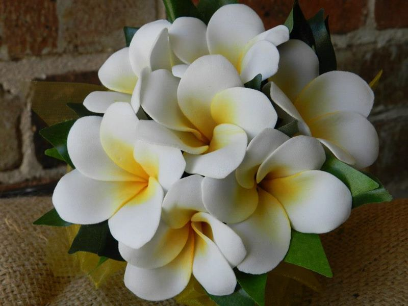 Buds n Roses  Frangipani wedding
