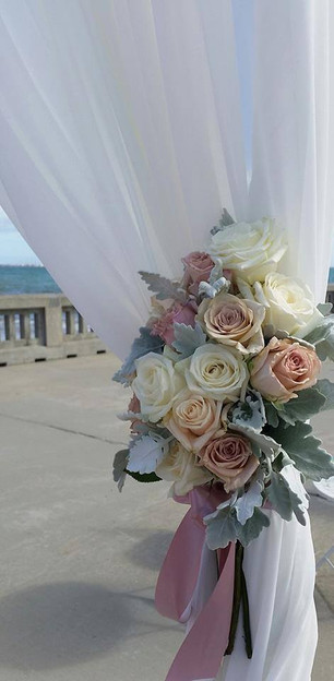 Fresh Roses on Elwood Pier..jpg