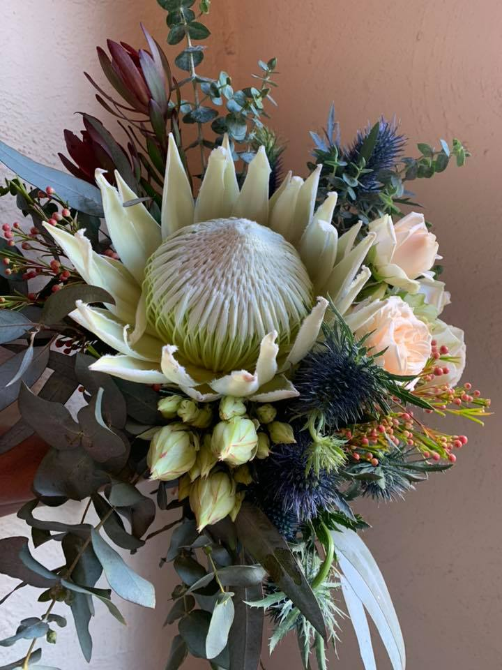 Buds n roses - big white king proteas.