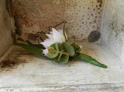 Buds n roses - Cream Blushing Bride Butt