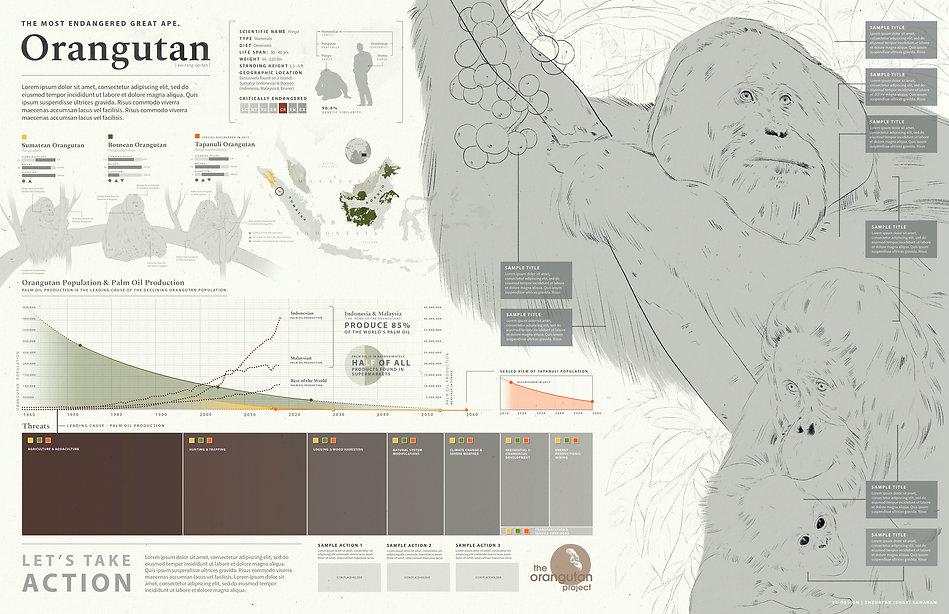 Orangutan_v9_wix.jpg