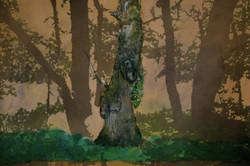 l'arbre de gepetto-pourexpo-bd