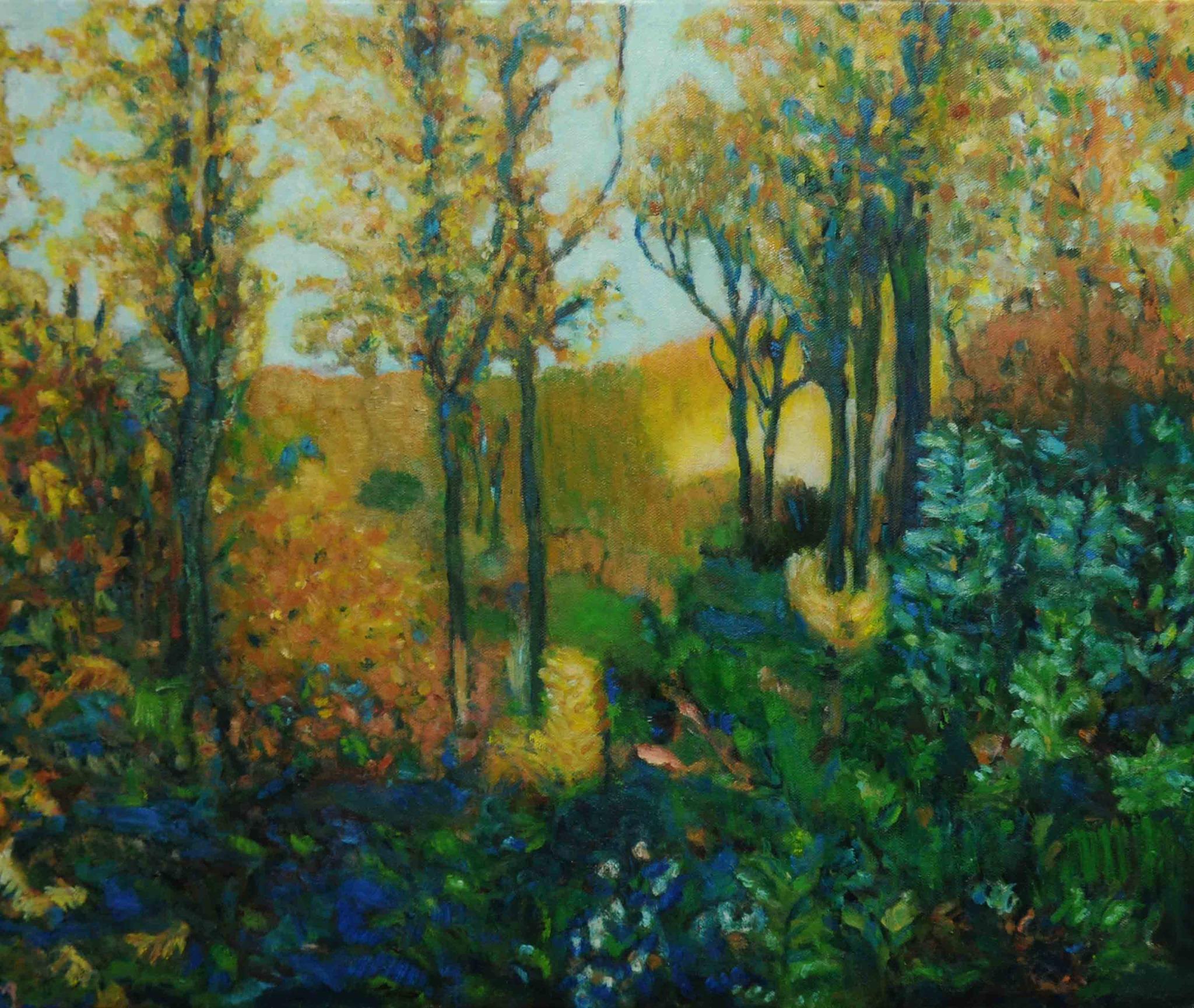Forêt de Baneuil