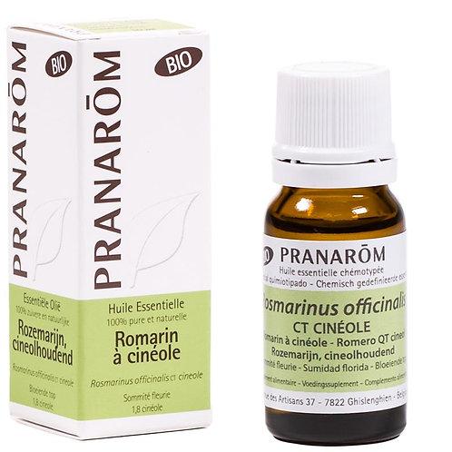 Etherische olie Rozemarijn (Rosmarinus offic. ct cin) BIO - 10 ml