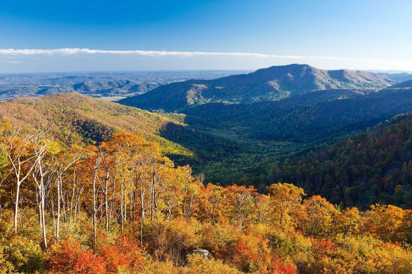 autumn-landscape-in-shenandoah-national-