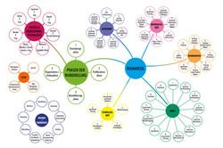 Infografik Rehakreise