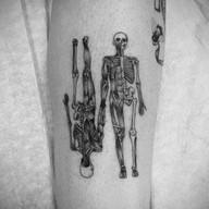 fineline skeleton