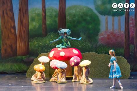 Alice's Adventures in Wonderland 2013