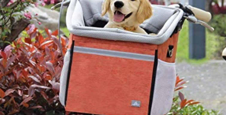 Dog Carrier for your Zoom Scooters
