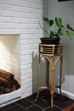 plant corner.jpg