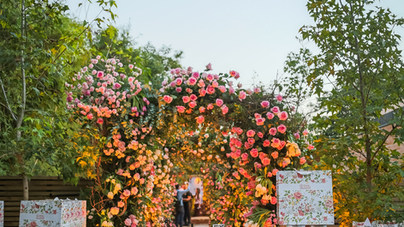 Feira das Flores sunset