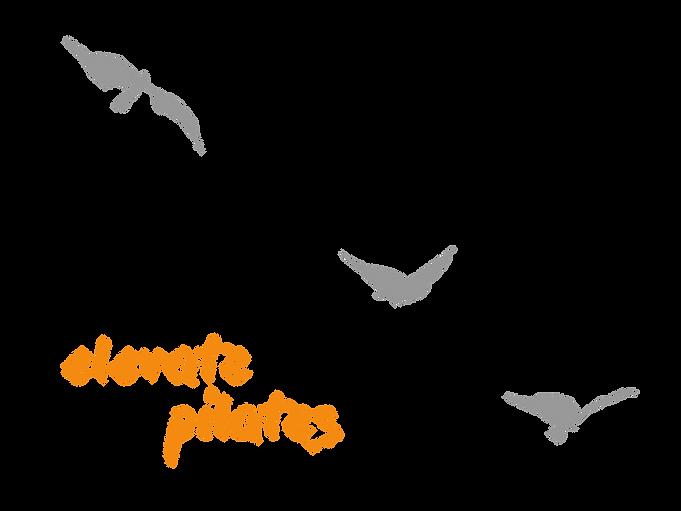 Elevate Pilates logo