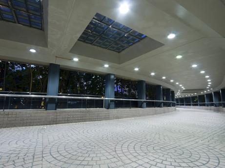 LED Downlight Series