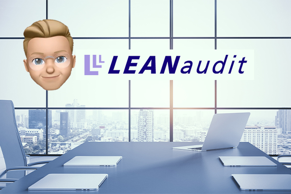 The Lean Audit