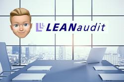 The Lean Audit