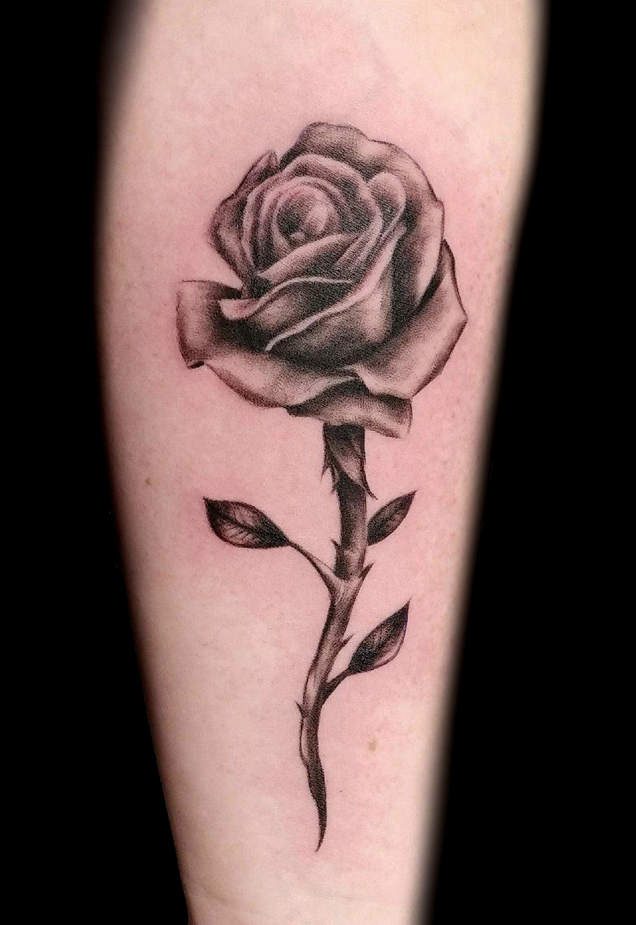 rose - left forearm