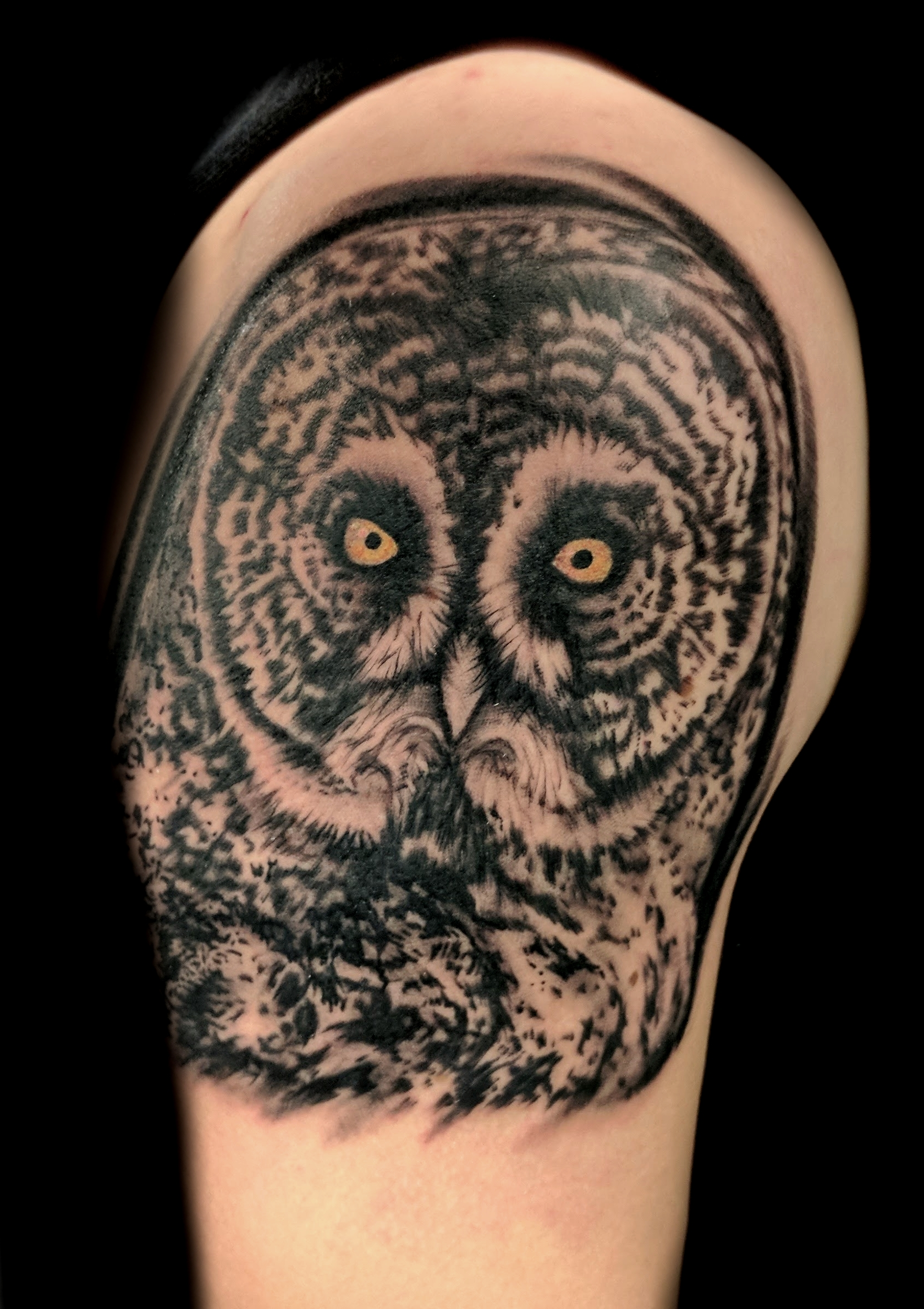great owl - upper right arm 1
