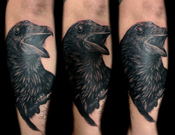 three eyed raven - right forearm