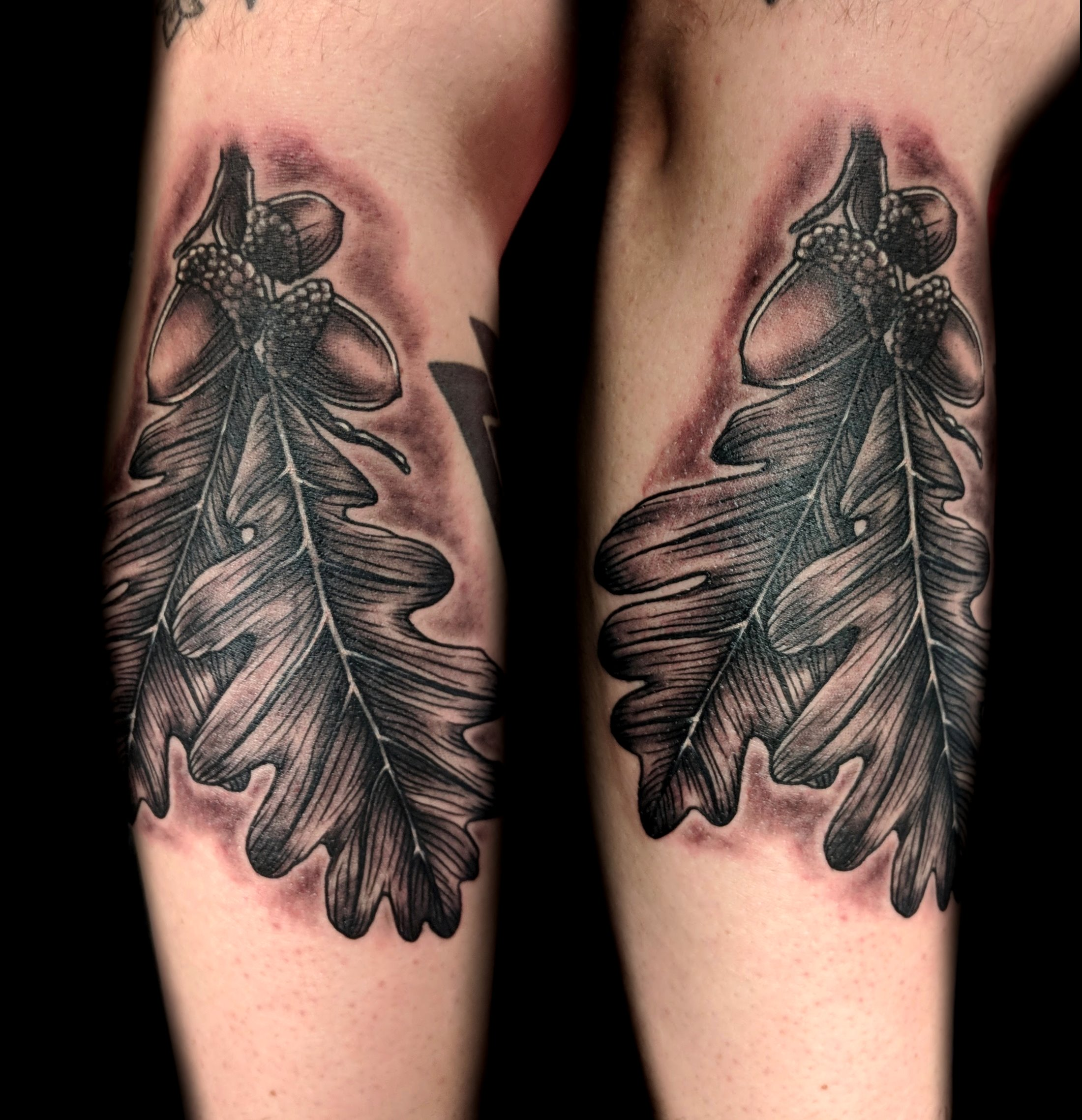 white oak leaves accorns - right forearm