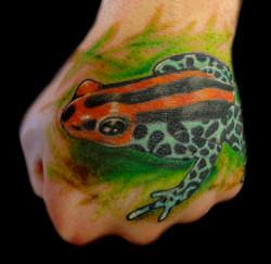 frog - left hand