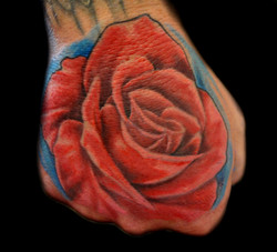 flower - rose pink - righthand