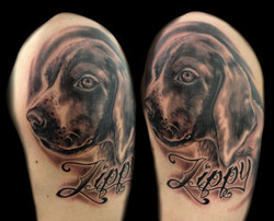 Portrait - dog - zippy - left upper arm.